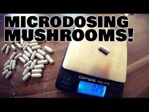 MICRODOSING 101! Step By Step To Microdosing Psilocybin Mushrooms