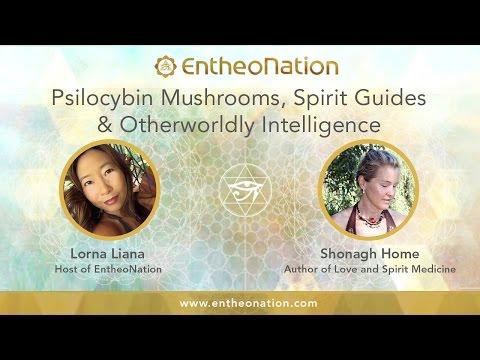 Psilocybin Mushrooms, Spirit Guides & Otherworldly Intelligence | Shonagh Home