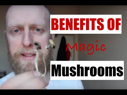 Why I take Magic Mushrooms on the regular: Drug or Medicine?