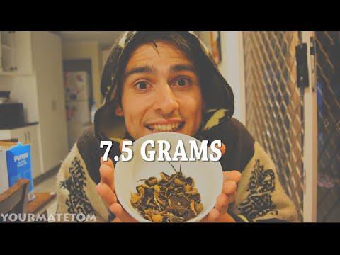 7.5g PSILOCYBIN Mushrooms Preparation | Wish Me Luck!