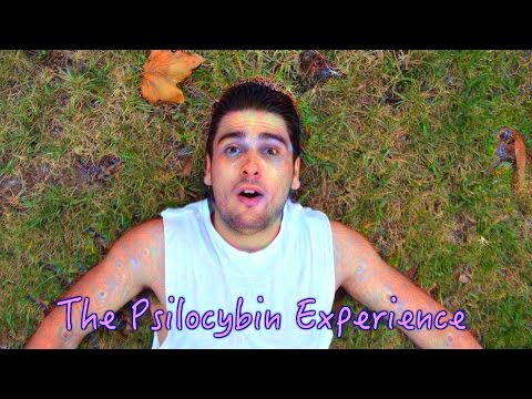What SHROOMS Feel Like | The Psilocybin Mushroom Experience (Low Vs High dose)
