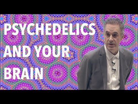 Jordan Peterson: Overcome your fear of death… with psilocybin mushrooms?