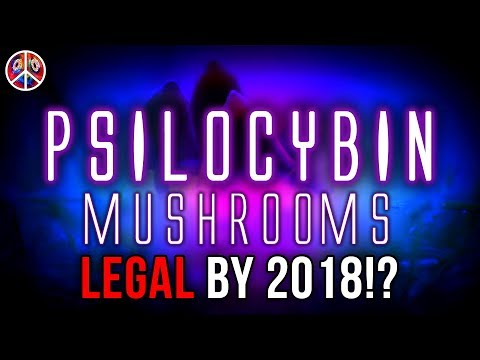 Psilocybin Mushrooms LEGAL by 2018!?
