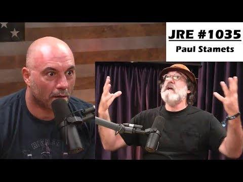 Paul Stamets describes his first Psilocybin Mushroom Trip – Joe Rogan Experience #1035