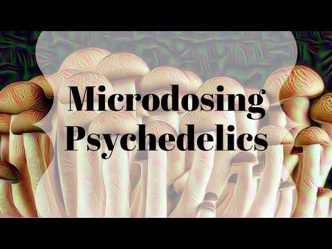 My experience microdosing psychedelics | differences between LSD and Psilocybin