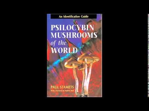 Download Psilocybin Mushrooms of the World An Identification Guide PDF