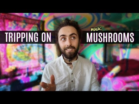MAGIC MUSHROOMS! (A Guide to Tripping)