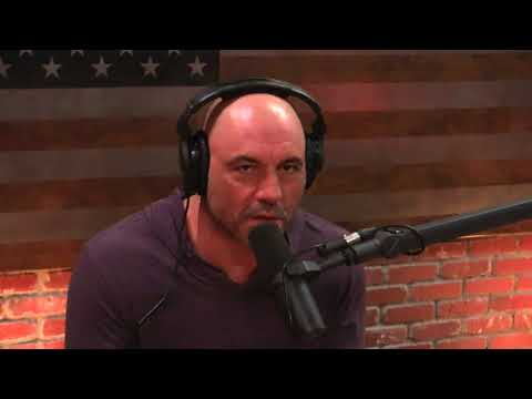 Joe Rogan & Neal Brennan on Micro-dosing Mushrooms