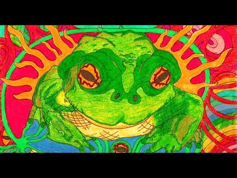 Hamilton's Pharmacopeia – Bufo The Psychedelic Toad