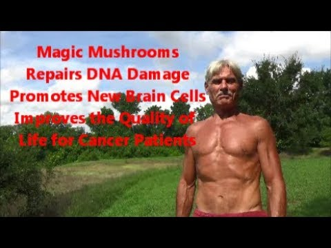 Magic Mushrooms | Repairs DNA Damage | Promotes New Brain Cells | Helps Cancer Patients