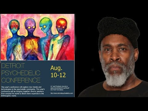 Psychedelic Conference psychedelics and the future of humanity DMT