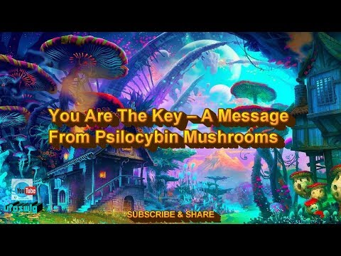 You Are The Key – A Message From Psilocybin Mushrooms