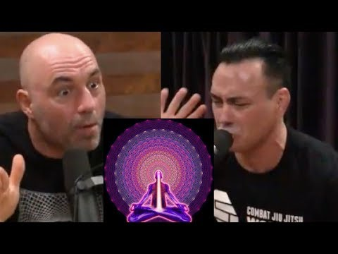 """Joe Rogan – Mushrooms, Soul-traveling 