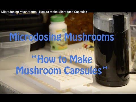 Microdosing Mushrooms – How to make Microdose Capsules