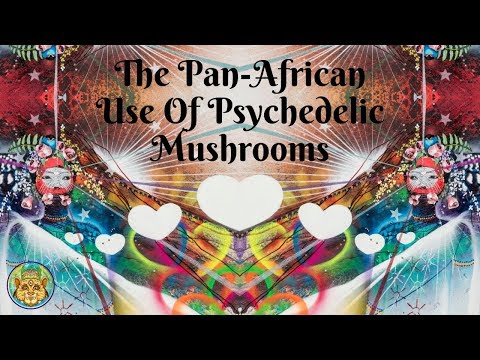 The Pan-African Use Of Psychedelic Mushrooms | Darren Spinger ~ ATTMind 91