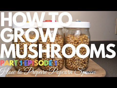 How To Grow Mushrooms – Part 1 Episode 1 – How To Prepare Popcorn Spawn Jars