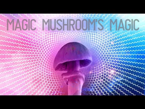 Why are magic mushrooms magic?