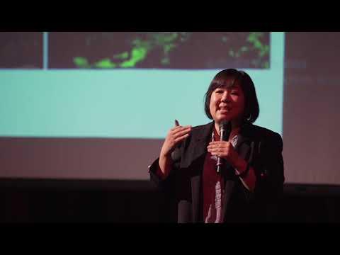 Magic Mushrooms: Malaysia's Glow-in-the-Dark Fungi | Yee Shin Tan | TEDxYouth@MKIS