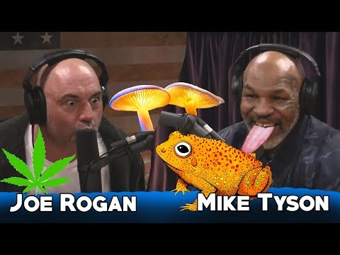 Mike Tyson talking about psychedelic mushrooms and toads