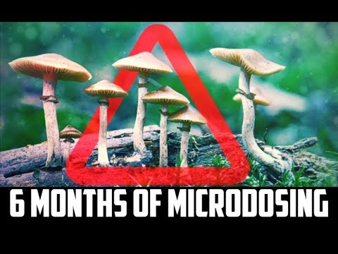 What I Learned Microdosing Mushrooms For 6 Months