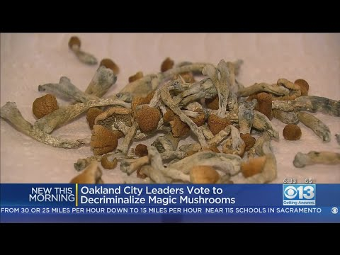 Oakland Becomes 2nd US City To Legalize Magic Mushrooms