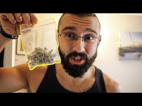 Taking 10g of Magic Mushrooms LIVE – 'Godly Dose'