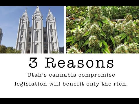 Medical Cannabis in Utah vs. LDS Church Power