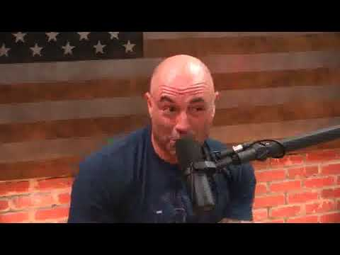 Joe Rogan and Paul Stamets on psilocybin and its effects on the brain