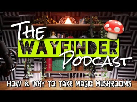 """#22: """"How & Why To Take Magic Mushrooms"""" – A Complete Guide to Reasoning, Dosing, & Integration"""