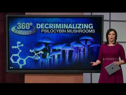 "360° Perspective: Decriminalizing ""magic"" mushrooms"