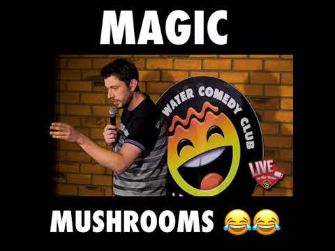Danny Deegan | Magic Mushrooms
