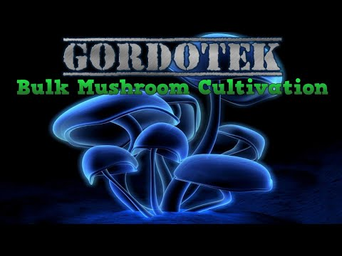 GordoTEK Edible Mushroom Cultivation for Health (Best Methods 2019 COMPLETE step by step TEK)