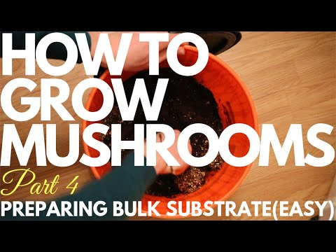 How To Prepare Bulk Substrate(Easy Method) | How To Grow Mushrooms | Part 4