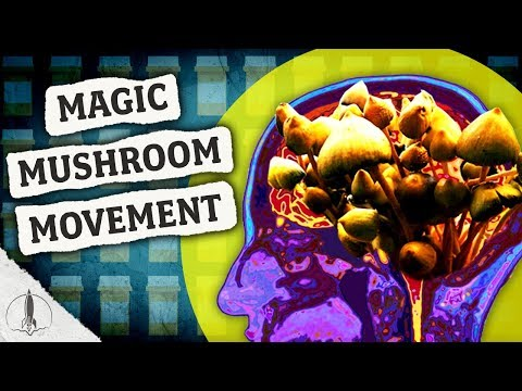 Magic Mushrooms, Mental Health, & The 2020 Elections: Why States May Vote on Psilocybin Soon…