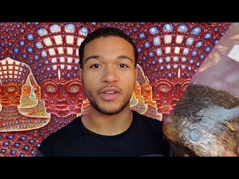 Growing Magic Mushrooms | Which Method Is Best For Your Lifestyle?