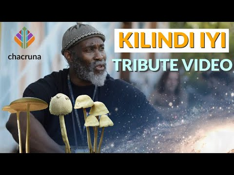 Kilindi Iyi tribute video: psychedelic pioneer with high-dose psilocybin